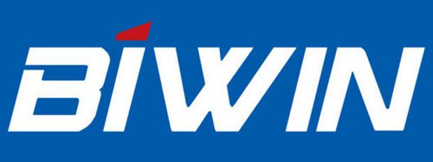 Biwin-Logo_New_reverse_600