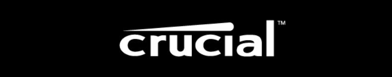 cruicial logo