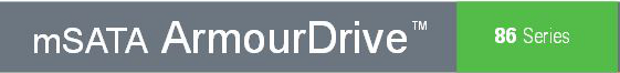 Greenliant mSATA armor drive banner