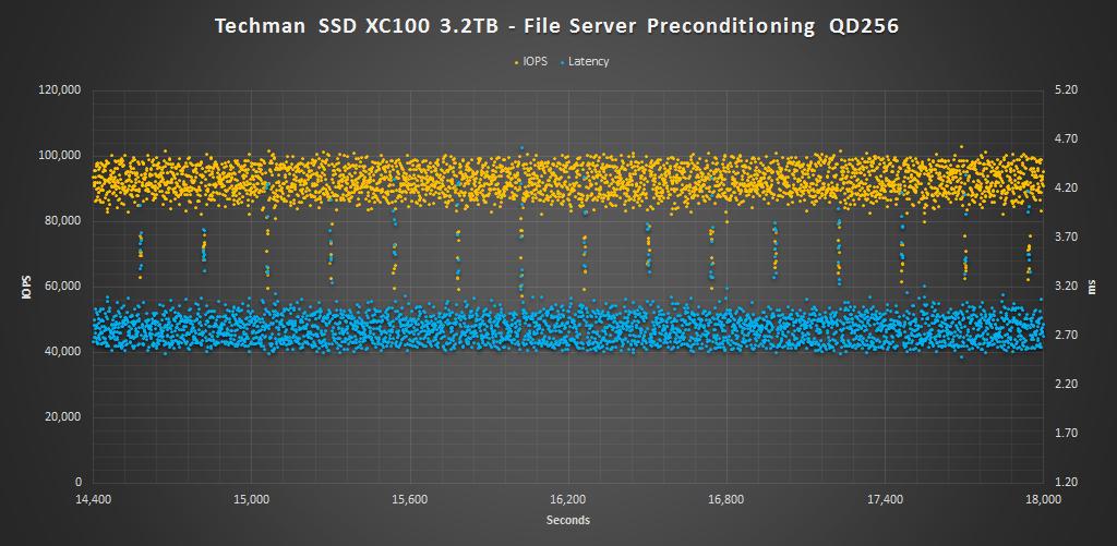 Techman SSD XC100 3.2TB FS Pre